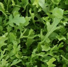 Serrated-Salad-Rocket